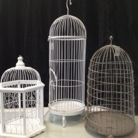 3-bird-cages1-525x700